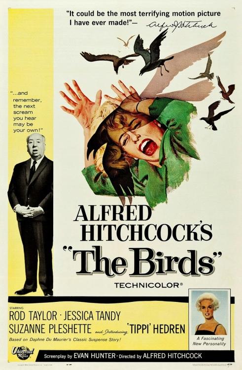 21 The Birds